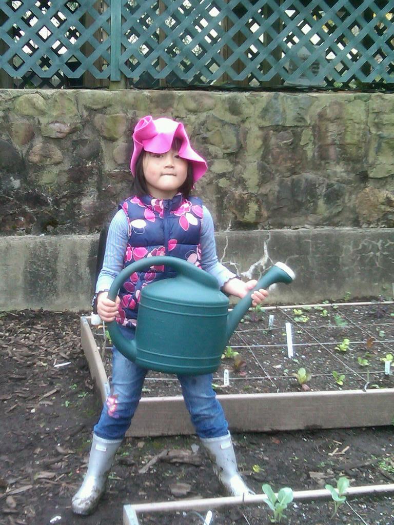 a_garden