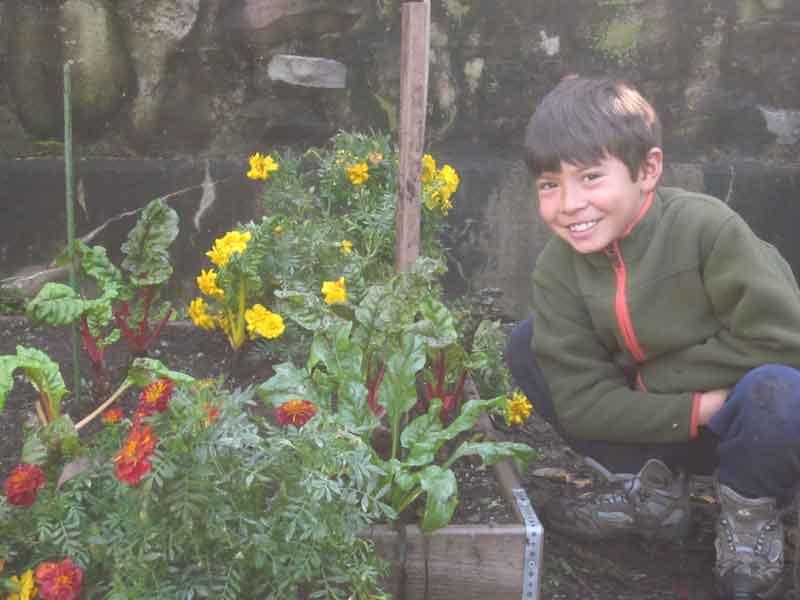 favorite-garden-bed
